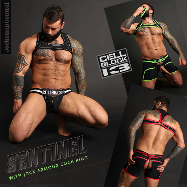 Cellblock 13 Sentinel Jockstraps and Trunks with Jock Armour plus Harnesses
